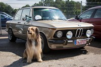 ALPINA_50_JAHRE_Corso__112_.jpg - click for bigger image